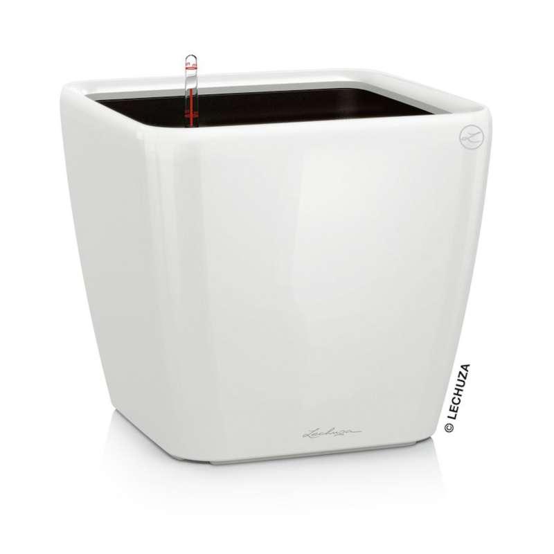 Lechuza Quadro Premium LS 21 Blumentopf Bewässerungssystem 21x21x20 cm 4 L 7 Farben Pflanzgefäß