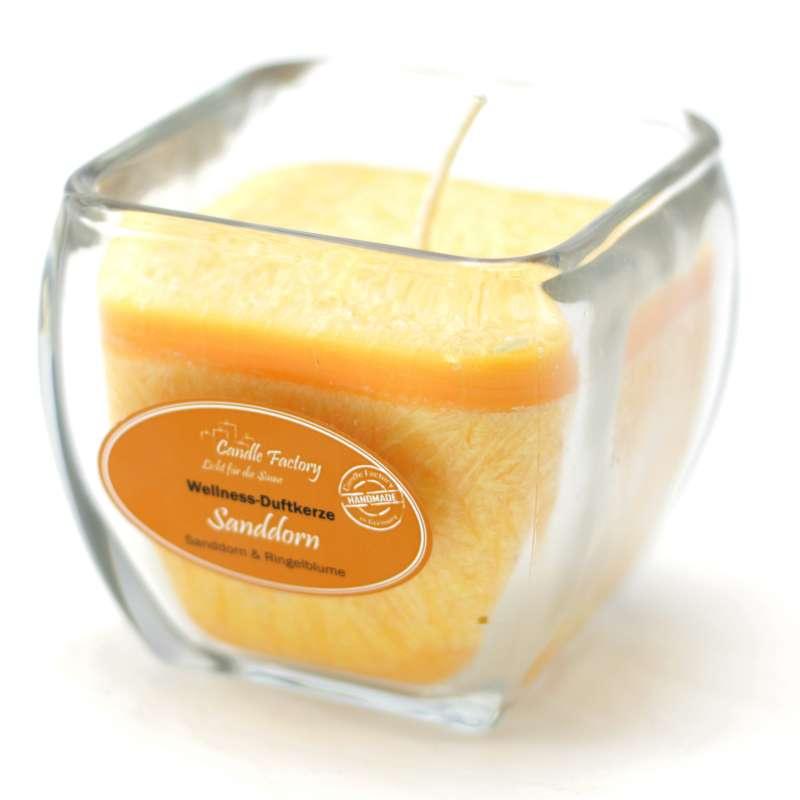 Candle Factory Wellness Duftkerze Sanddorn Dekokerze 800-015